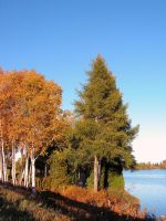 By the Lake in Autumn by JocelyneR