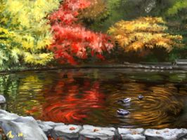 Pond by jazzjiang
