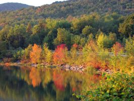 Fall Colors 277363 by StockProject1