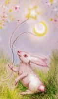White Bunnies by FiabeSCa