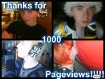 1000 PAGEVIEWS by ShaeWarner