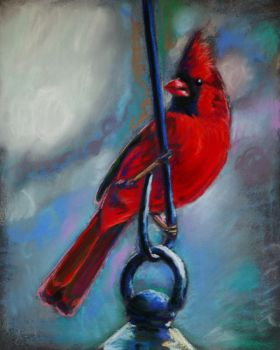 Male Cardinal - pastel by Mastertypo