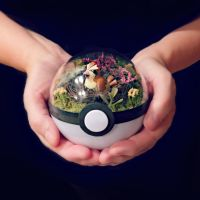 Pidgey Nest Poke Ball Terrarium by TheVintageRealm