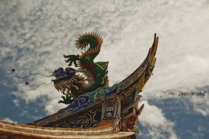 Sky Dragon by MSH-Photography