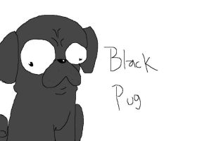 Black Pug. by NeverWastedTime