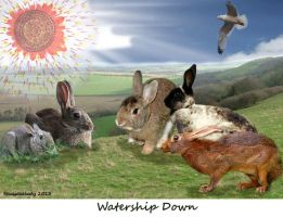 The Real Watership Down by Shaydeelady