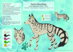 Sachi Hiroshima - Feral Reference Sheet 2015 [Com] by DeadWolfGirl93