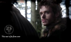 Robb Stark by Stormdelight