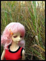 In the tall grass by sweetmeika
