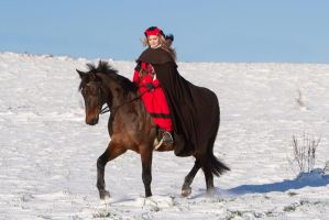 Trotting through the snowy lands Stock III by LuDa-Stock