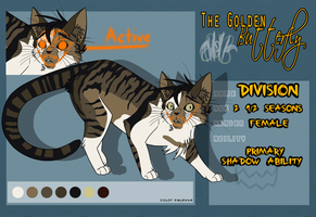 Division Profile for TGB by RocketMeowth