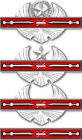 Legionnaire's  Combat Badge by 1Wyrmshadow1