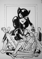 Catwoman And The Doctors by BevisMusson