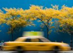 New York Blue Yellow by stevecliff