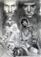 Lord of the rings by janep