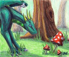 AT: Mushroom Forest by Leithster