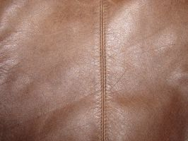 Light Brown Leather Texture by FantasyStock