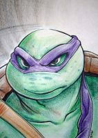 Turtle Power Hour by SeriojaInc