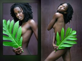 Vegetal by abclic