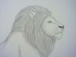 Lion by GothNebula
