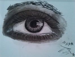 new eye with natural charocals by Sonnenelfe
