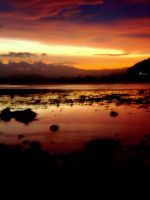 our unoriginal island sunset I by midwinters