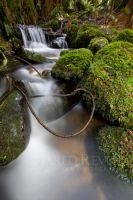 Lasso at Cement Creek by jaredrevell