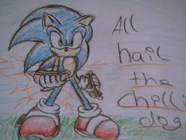 Sonic and his chili dog by shadowhatesomochao