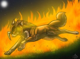 going down in flames by wolfhound56200