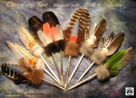 FAERY POET Natural Quills by ChaeyAhne
