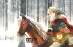 Winter Link by ruistyfles