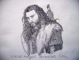 Thorin Oakenshield by RuaGall