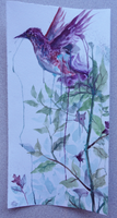 Out by Capukat