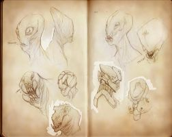 Sketchbook_because by Ikameka