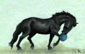 'Tis my rubber ball by NightingaleStables