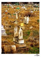 graveyard by orcunceyhan