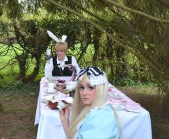 alice and white rabbit by narutine
