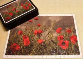 Bought from DA, Poppy Puzzle by sweetmarly