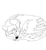 Wolf Color-in by DistortedAlice