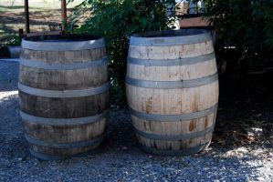 Wine barrels-Stock by Thorvold-Stock