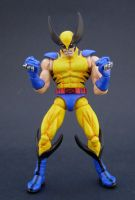 Wolverine 1 by Jin-Saotome
