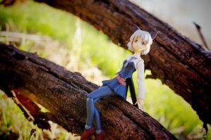 Small Wonders by Noble-beast-photo