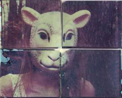 Image Transfer - Sheep Sister by seriuse
