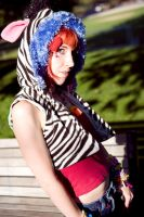 Zebras go Meow by Z-Photography