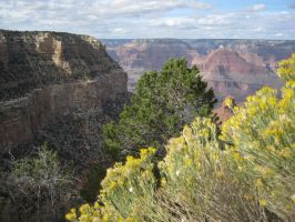 Grand Canyon by Reck27