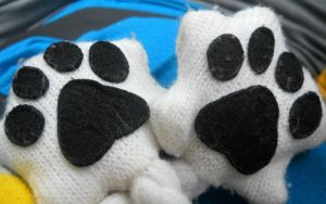 Panda Paws by Readmeabook21