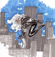Black Cat on the rooftops by SpiderGuile