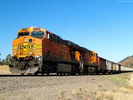 BNSF by NitzkaPhotography