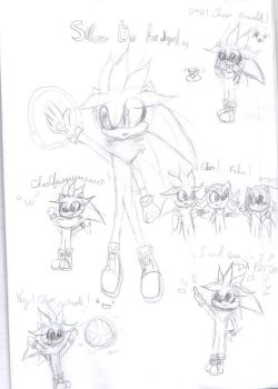 Doodle page Silver XD by BlazeTheCat78