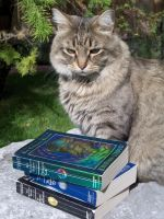 Cat with Books by firebutterfly-narya